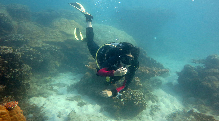 Con Dao duiken