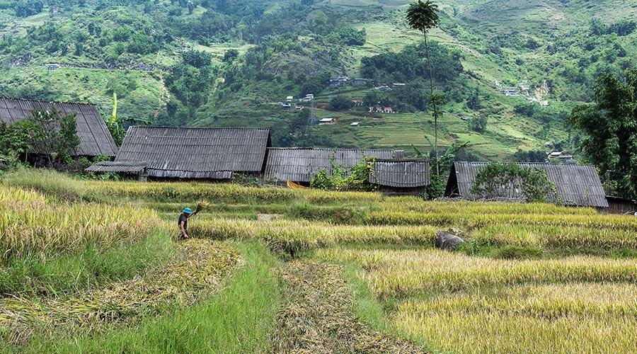 Ta Van Village Sapa