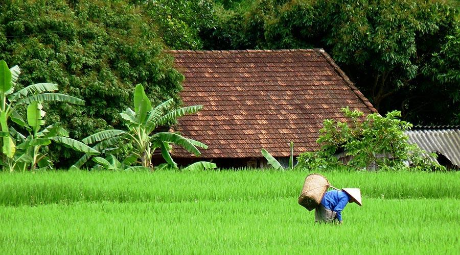 Van Village Mai Chau