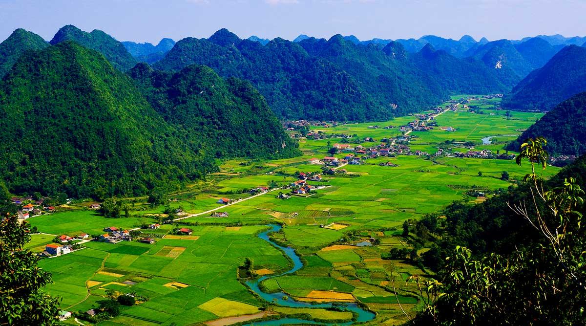 Bac Son rijstvelden