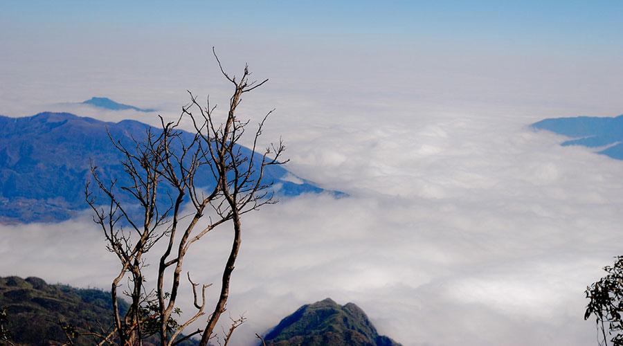 Fansipan trekking in Sapa