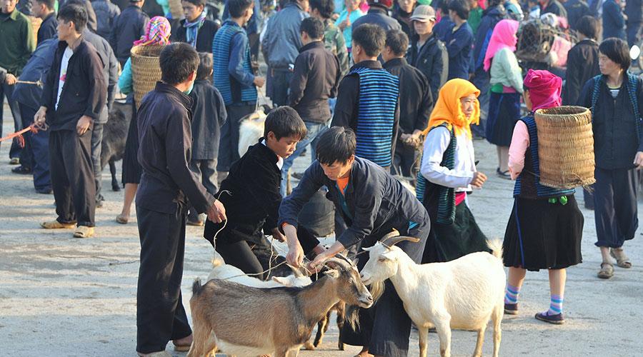 Meo Vac zondagsmarkt