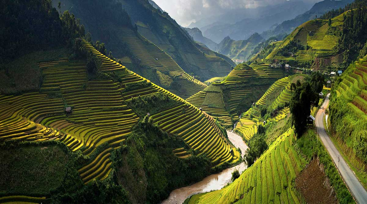 Mu Cang Chai rijstvelden