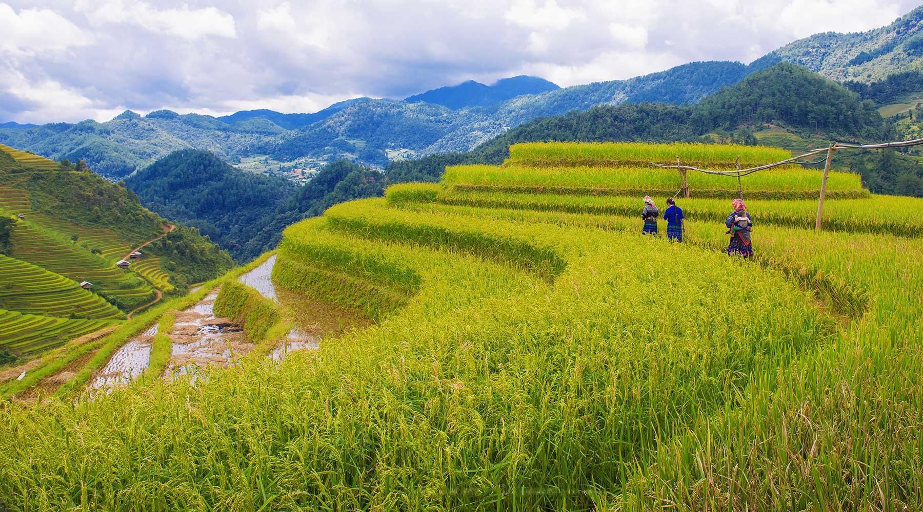 Top 10 off the beaten track bestemmingen in Vietnam