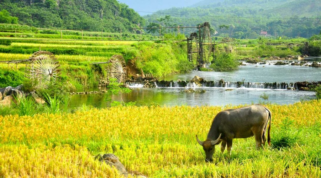 Pu Luong off the beaten track in Vietnam