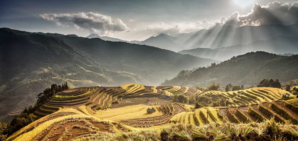 Vietnam beste reistijd