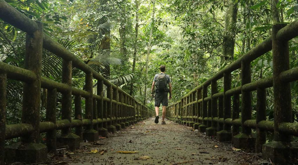 Cuc Phuong trekking
