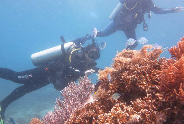 duiken in Vietnam