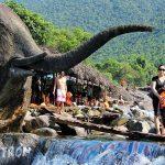 Elephant Springs (Suoi Voi)