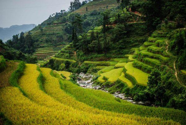 Hoang Su Phi in Ha Giang