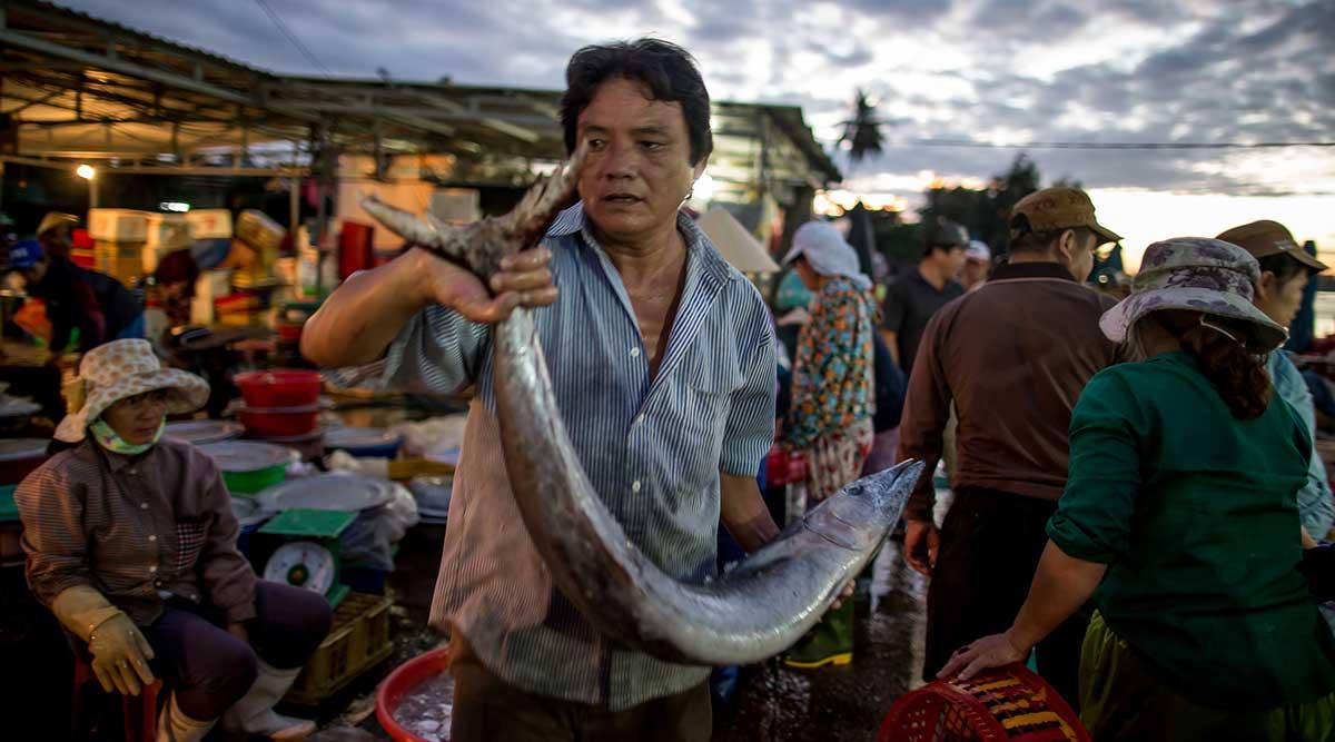 Hoi An vismarkt