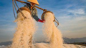 Hon Khoi Salt Fields bij Nha Trang