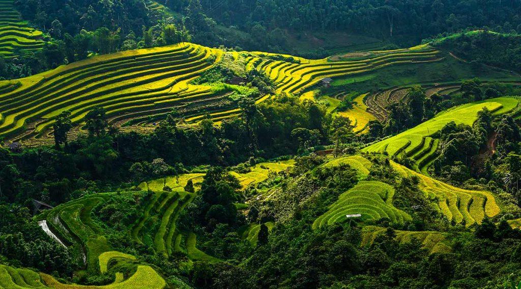 Nam Ty Hoang Su Phi