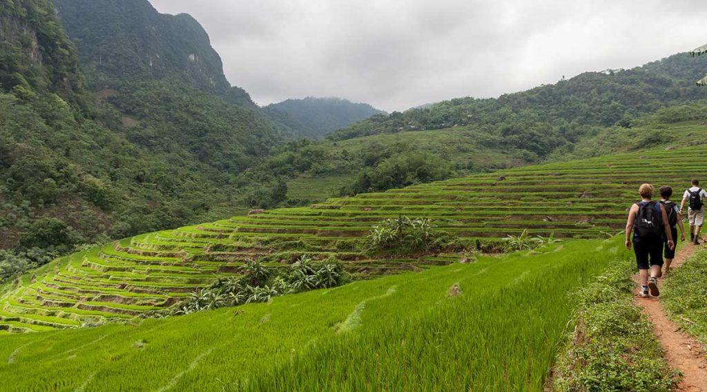 Pu Luong trekking