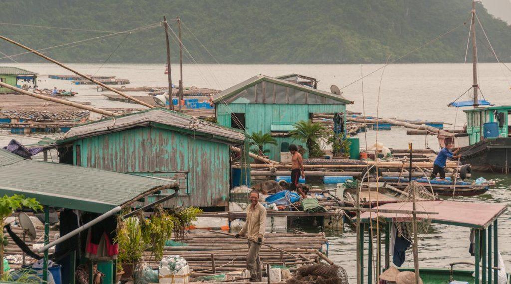 drijvend vissersdorp Bai Tu Long Bay