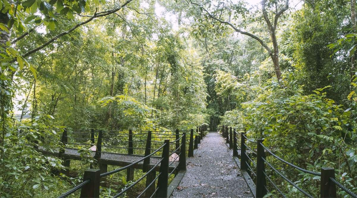 wandelen in Cat Tien National Park
