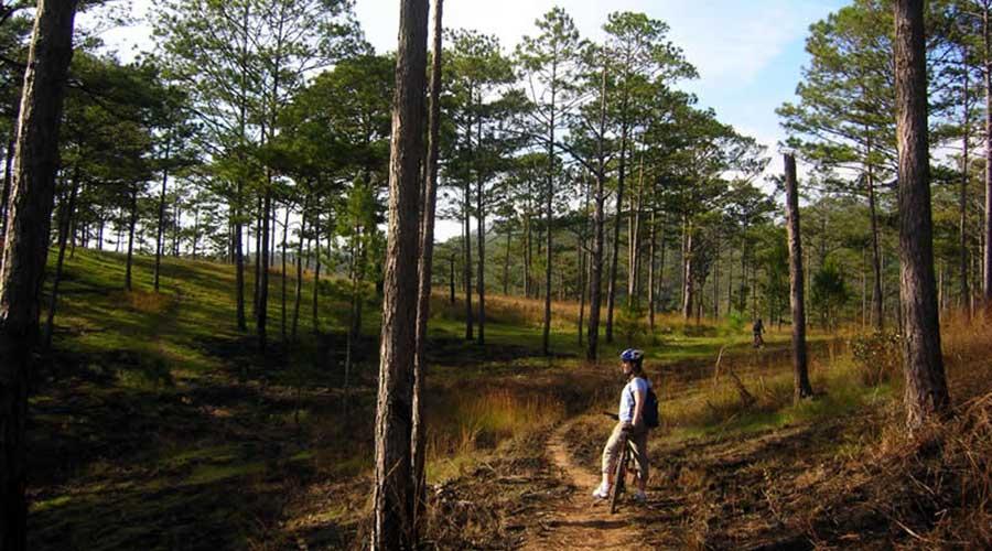 mountainbiken Dalat