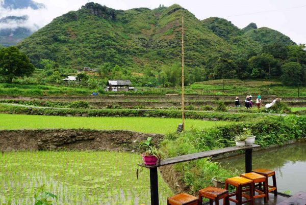 Du Gia in Ha Giang