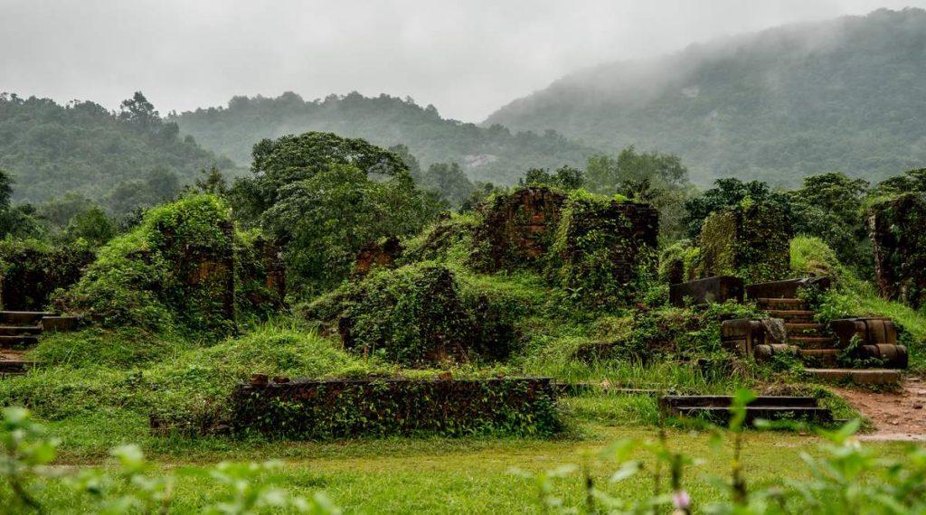 My Son jungle in Vietnam