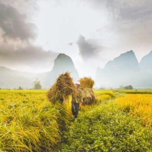 rondreis noord Vietnam