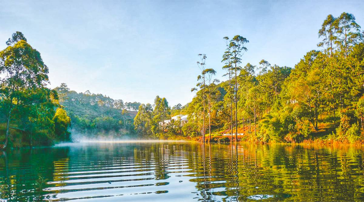 Jungle fever trekking in Dalat