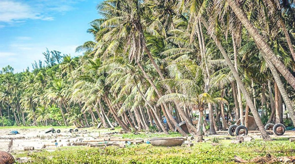 strand Tam Hai