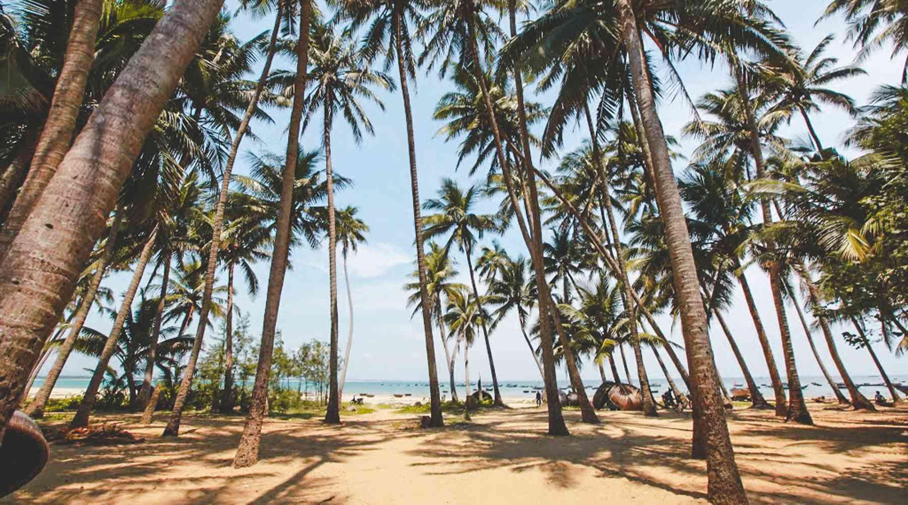 Tam Hai eiland