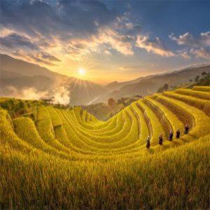 tour Mu Cang Chai