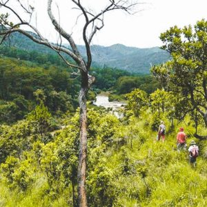 trekking Heaven gate trail in Dalat