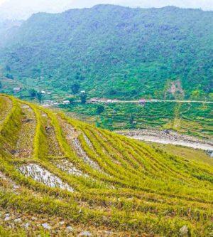 1 dag rijstterrassen trekking Sapa