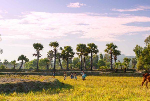 An Giang in de Mekong Delta