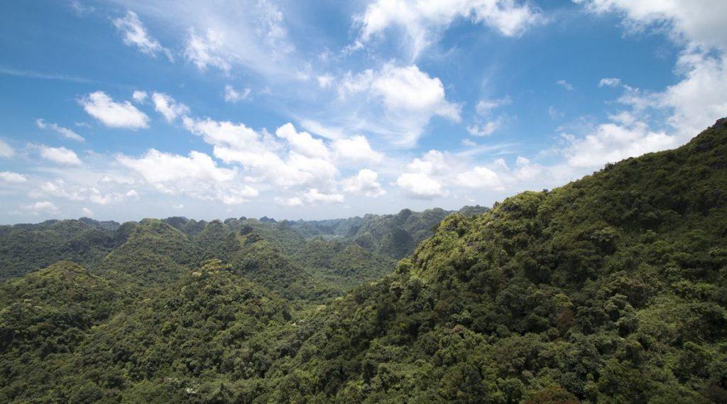 Cat Ba Nationaal Park