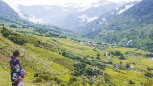 Muong Hoa Valley trekking