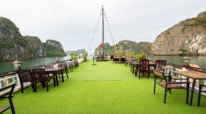 Swan cruise Bai Tu Long Bay