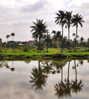 platteland Hoi An