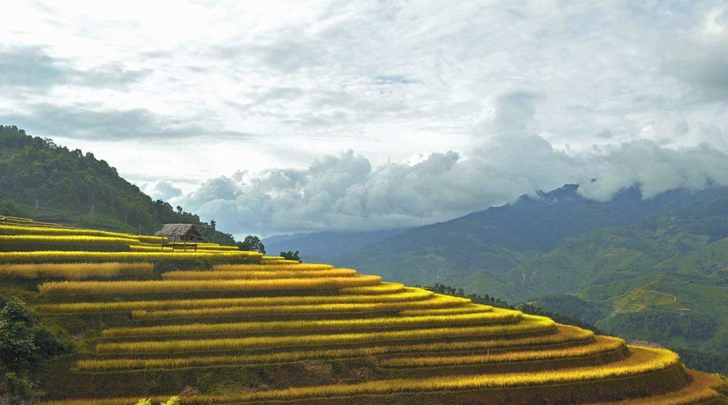Lao Chai trekking Sapa