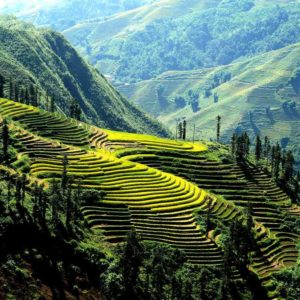 Sapa - Lao Chai - Ta Van