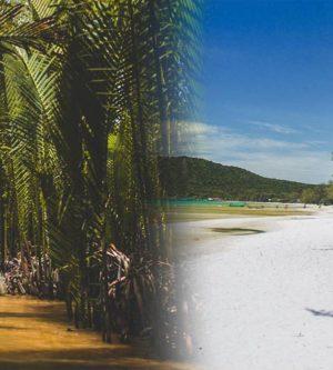Via de Mekong Delta van/naar Cambodja en Saigon