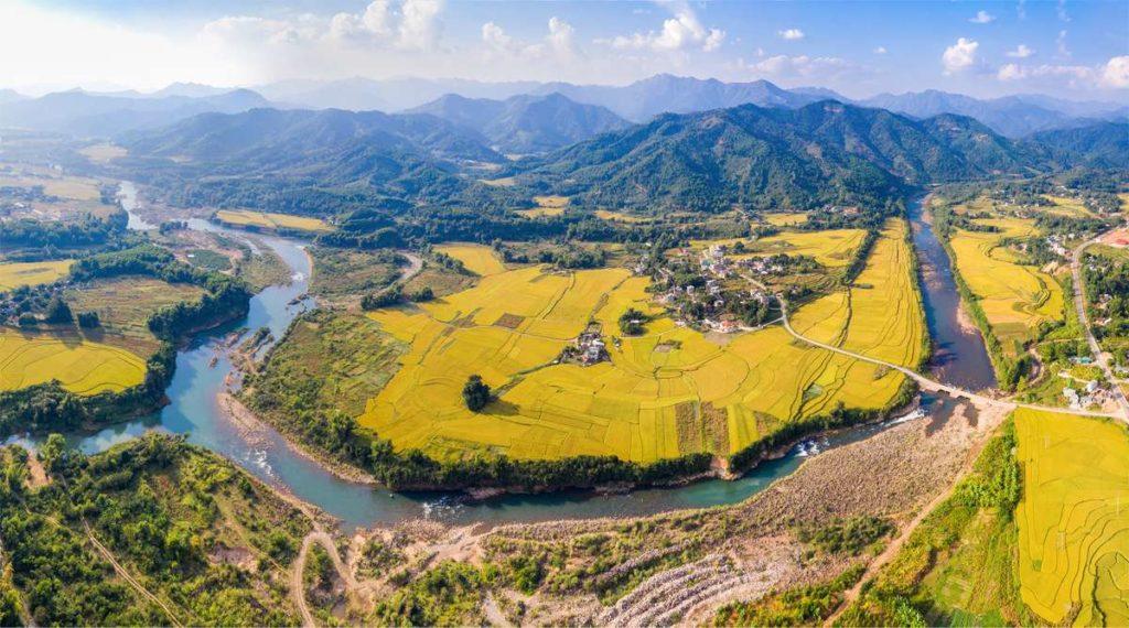rijstvelden noordoost Vietnam