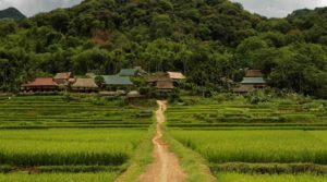 Trekking en wandeltochten in Mai Chau & Pu Luong